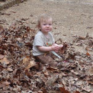 lollypop in leaves